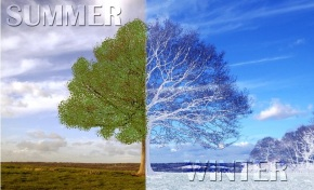 Think like summer in winter and winter in summer